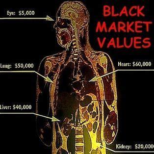 Should the Sale of Human Organs be Legal Premium Essay Help
